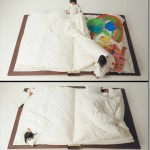 Offbeat and creative bed designs