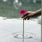 Beautiful ripple vase on the surface of the water