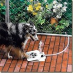 Fresh water whenever your pet wants it – Innovative drinking fountain