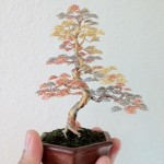 Amazing art – Miniature bonsai trees