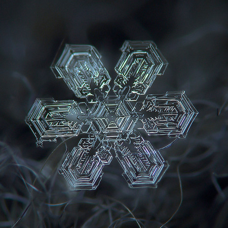 amazing-photography-beautiful-snowflake-pictures-macro-photographs (1)