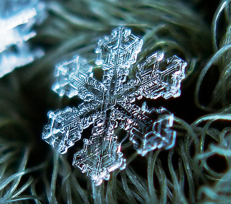 amazing-photography-beautiful-snowflake-pictures-macro-photographs (10)