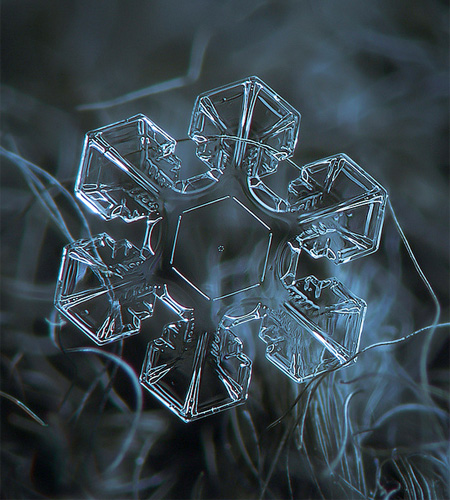 amazing-photography-beautiful-snowflake-pictures-macro-photographs (12)