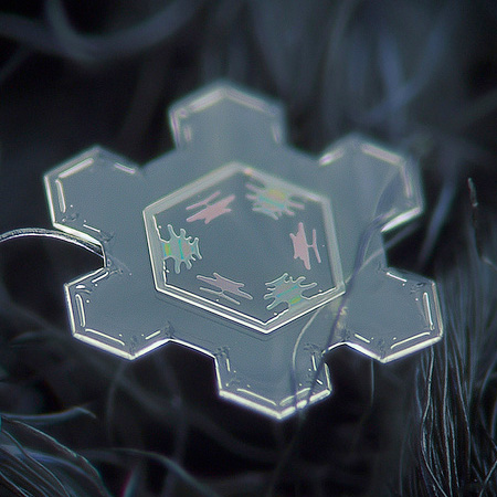 amazing-photography-beautiful-snowflake-pictures-macro-photographs (2)