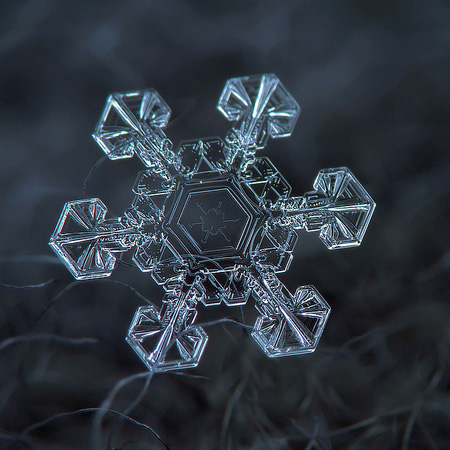 amazing-photography-beautiful-snowflake-pictures-macro-photographs (5)