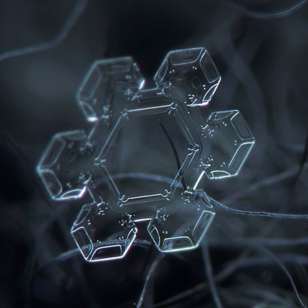 amazing-photography-beautiful-snowflake-pictures-macro-photographs (6)