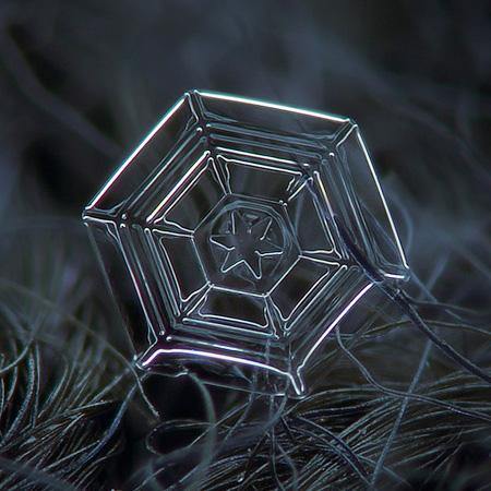 amazing-photography-beautiful-snowflake-pictures-macro-photographs (7)