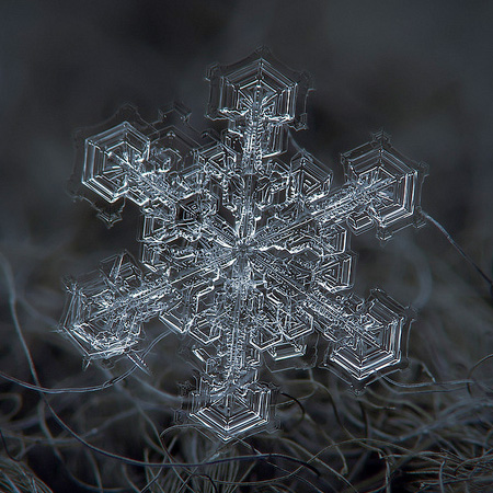 Stunning Snowflakes Photographs Vuing Com