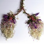 Intricate sculptures of human organs created out of wild plants and weeds