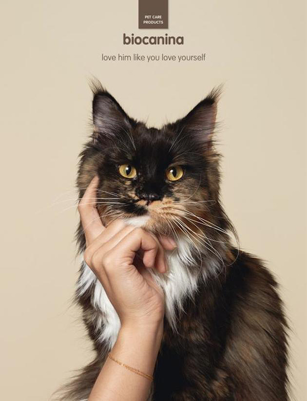 interesting-humorous-creative-funny-advertising-campaign-pet (2)