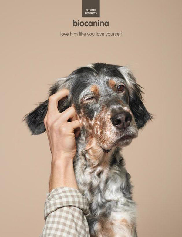 interesting-humorous-creative-funny-advertising-campaign-pet (3)