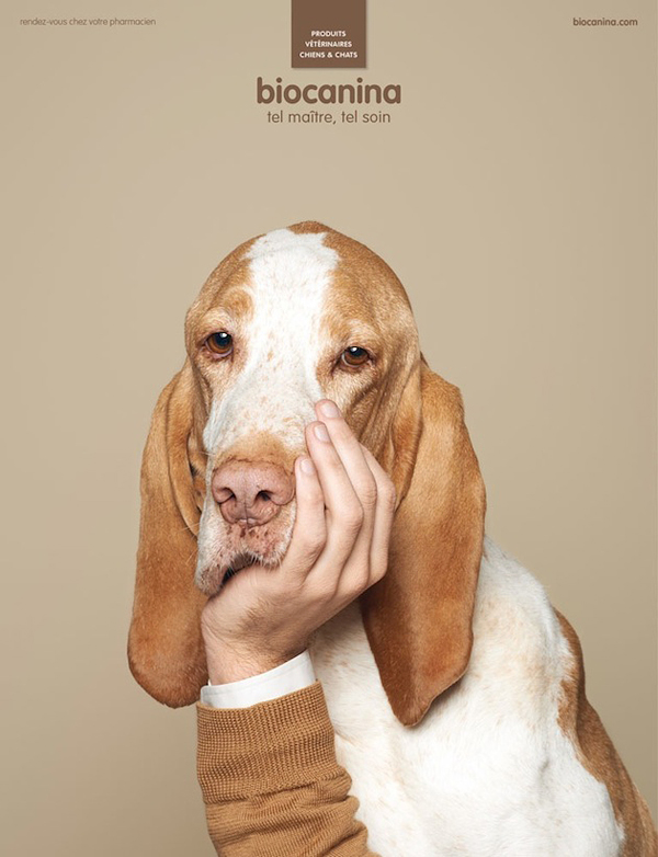 interesting-humorous-creative-funny-advertising-campaign-pet (4)