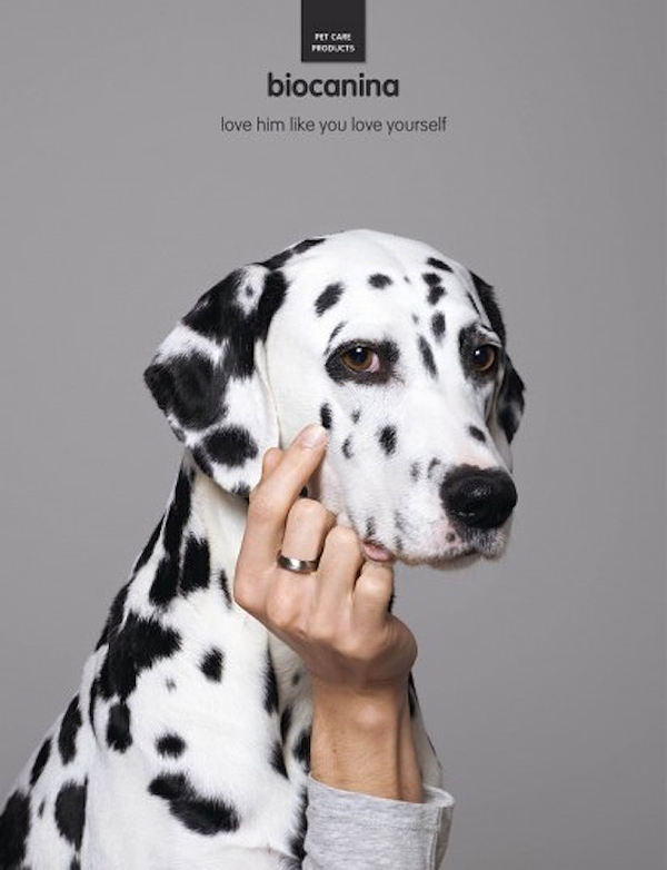interesting-humorous-creative-funny-advertising-campaign-pet (5)