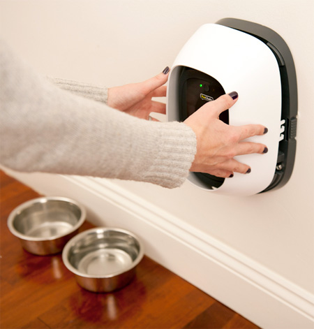 new-interactive-communication-system-device-for-pets (1)