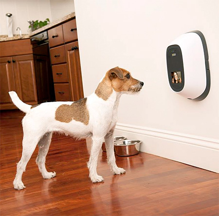 new-interactive-communication-system-device-for-pets (6)