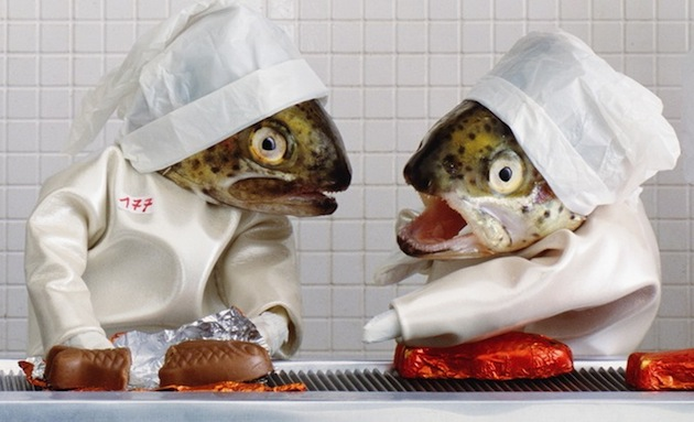 odd-strange-unusual-weird-funny-art-project-fish