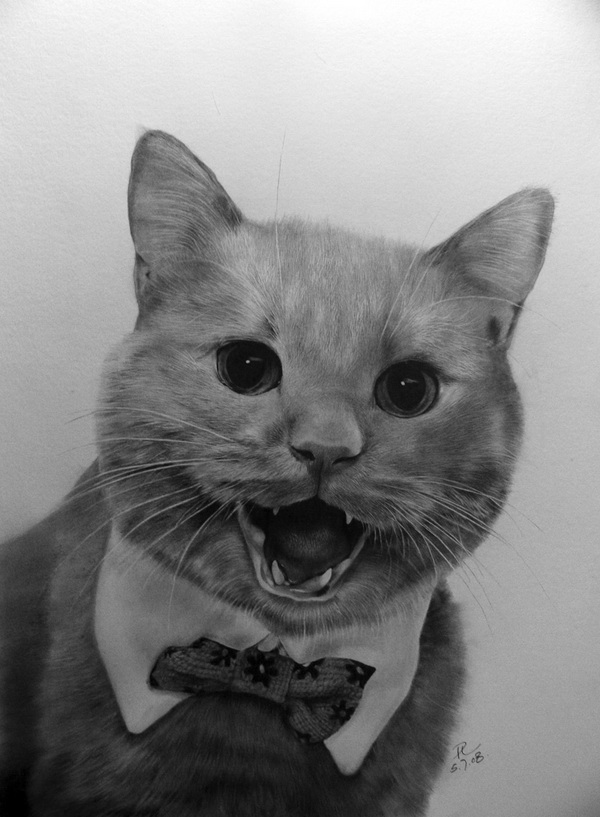 wonderful-incredible-cool-amazing-pencil-drawings-cat-images (14)