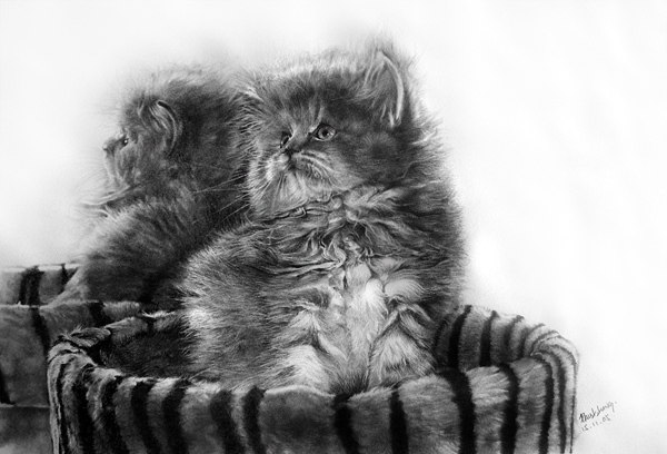 wonderful-incredible-cool-amazing-pencil-drawings-cat-images (2)