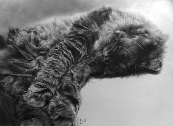 wonderful-incredible-cool-amazing-pencil-drawings-cat-images (8)
