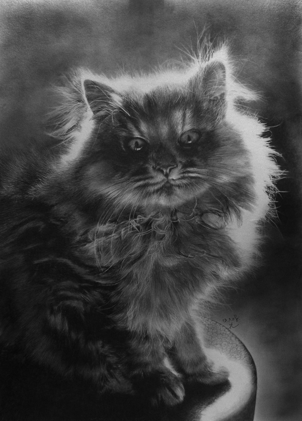 wonderful-incredible-cool-amazing-pencil-drawings-cat-images (9)