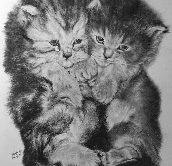 wonderful-incredible-cool-amazing-pencil-drawings-cat-images