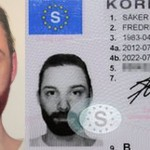 A photo or a painting – Photo-realistic self-portrait approved as drivers license photograph