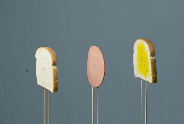 interesting-creative-food-art-fly