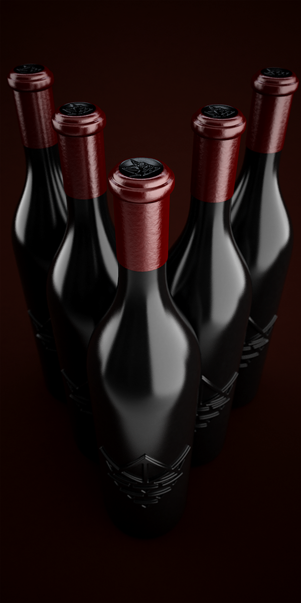 wondrous-beautiful-amazing-cool-wine-packaging-design (4)