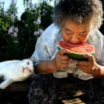 Intimate relationship between 88-year-old grandma and her odd-eyed cat