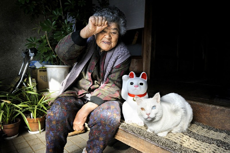 affecting-heart-warming-grandmother-and-odd-eyed-cat-photos (4)