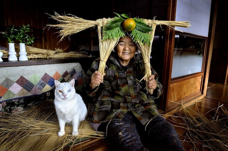 affecting-heart-warming-grandmother-and-odd-eyed-cat-photos (6)