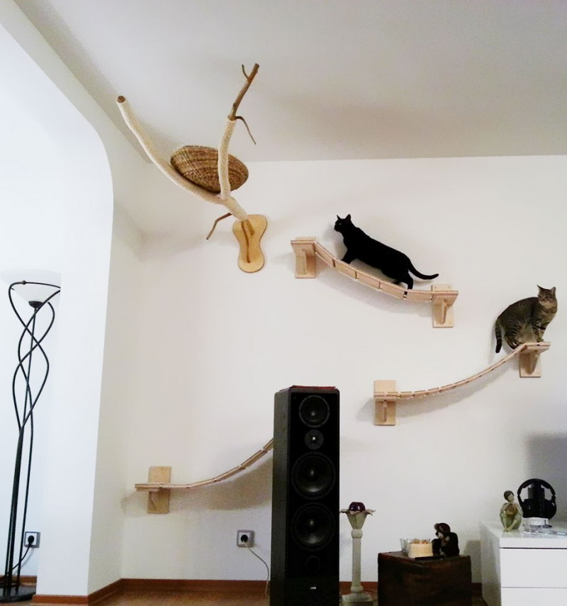 cats-fun-entertaining-play-playgrounds-in-home (6)