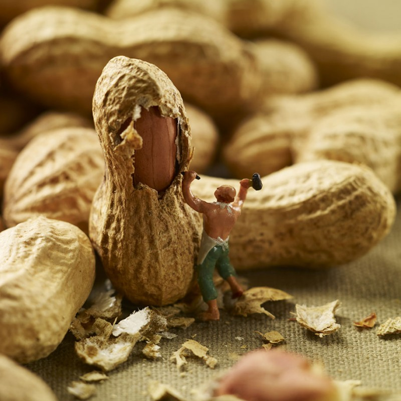 funny-creative-playful-minimiam-food-photography-pictures (16)