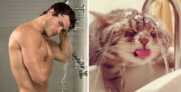 funny-hilarious-celebrities-male-stars-and-cats-pictures (11)