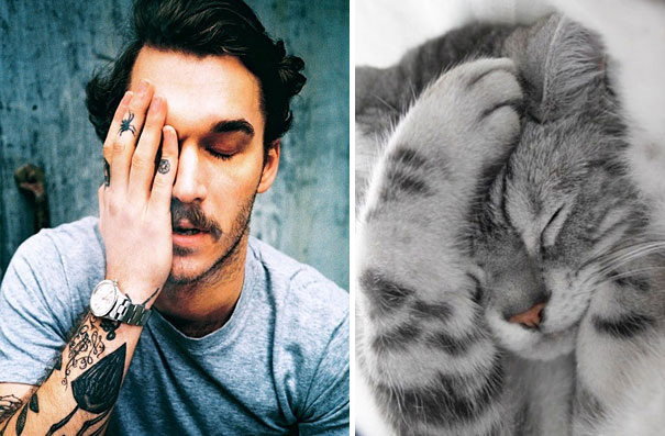 funny-hilarious-celebrities-male-stars-and-cats-pictures (22)