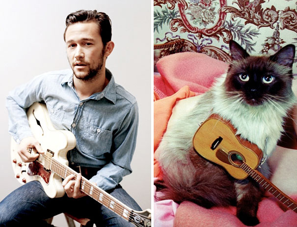 funny-hilarious-celebrities-male-stars-and-cats-pictures (4)