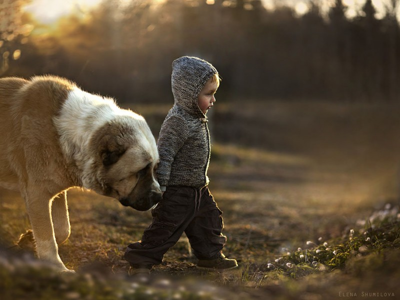 heartwarming-touching-beautiful-children-animals-photos-russia (5)