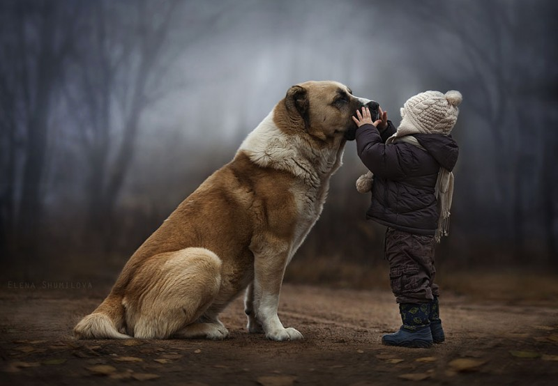 heartwarming-touching-beautiful-children-animals-photos-russia