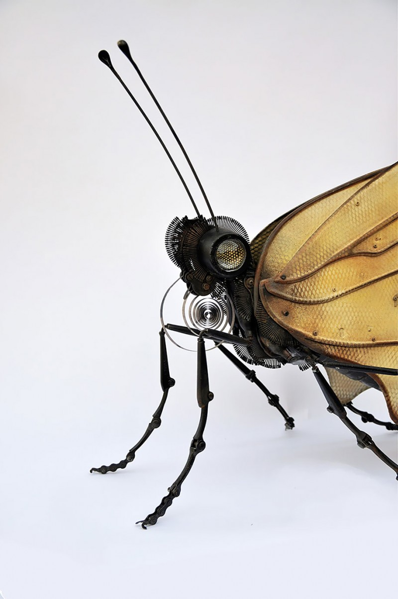 incredible-inspirational-insects-animals-miniature-sculptures-made-from-old-parts (10)