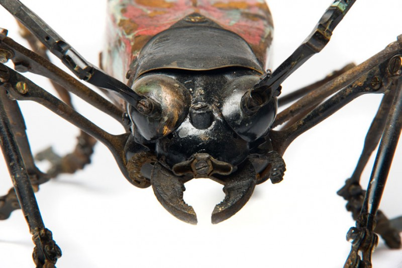 incredible-inspirational-insects-animals-miniature-sculptures-made-from-old-parts (7)
