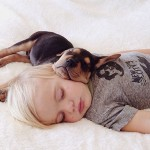 Lovely photos of toddler sleeping with adopted puppy