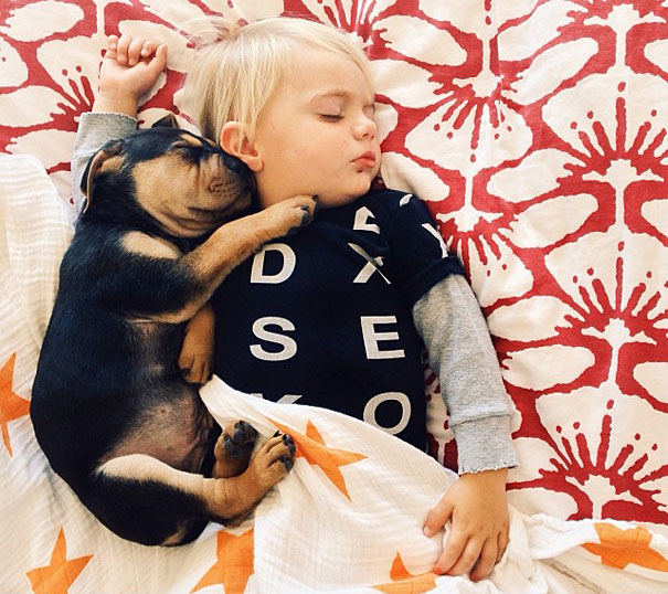 lovely-funny-cute-pictures-toddler-sleeping-with-puppy-dog (4)