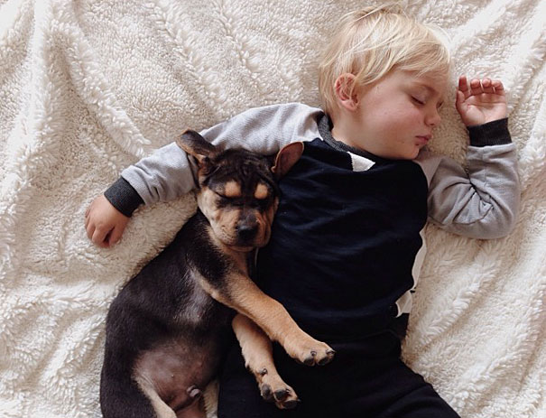 lovely-funny-cute-pictures-toddler-sleeping-with-puppy-dog (5)
