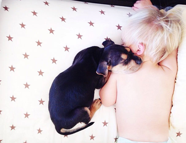 lovely-funny-cute-pictures-toddler-sleeping-with-puppy-dog (7)