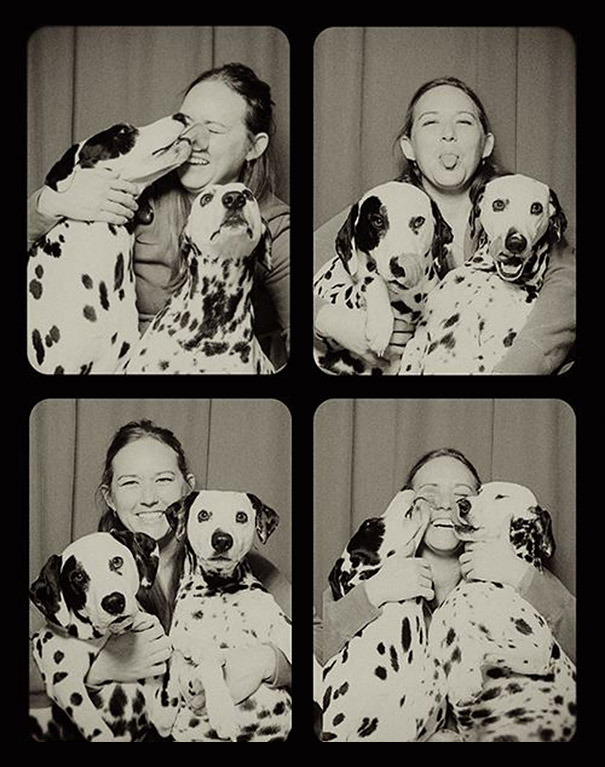 adorable-cute-funny-dogs-pictures-in-photo-booth (4)