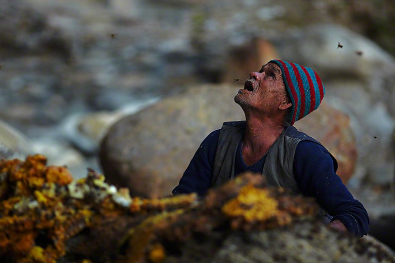 amazing-Nepal-Himalayan-traditional-honey-hunting-skills-photography (11)