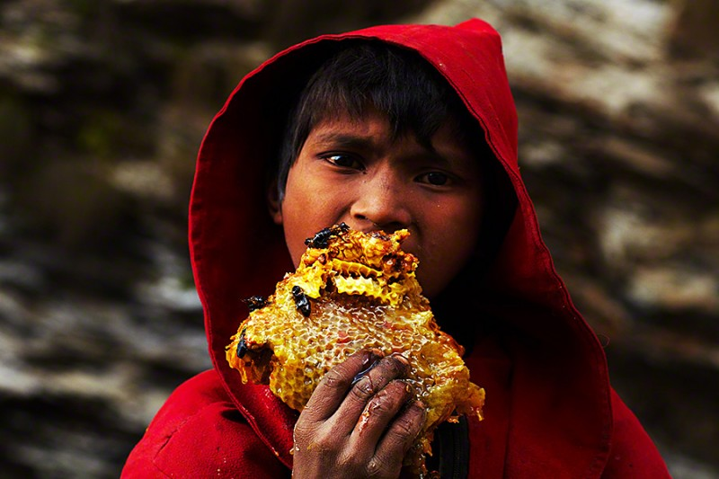 amazing-Nepal-Himalayan-traditional-honey-hunting-skills-photography (3)