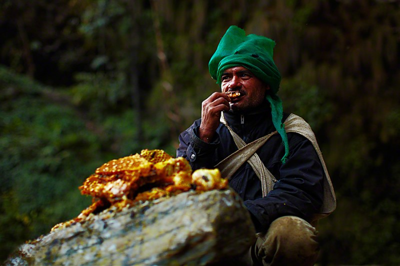 amazing-Nepal-Himalayan-traditional-honey-hunting-skills-photography (4)