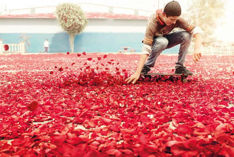 amazing-dreamlike-beautiful-spetacle-flower-petals-advertisement-campaign (6)