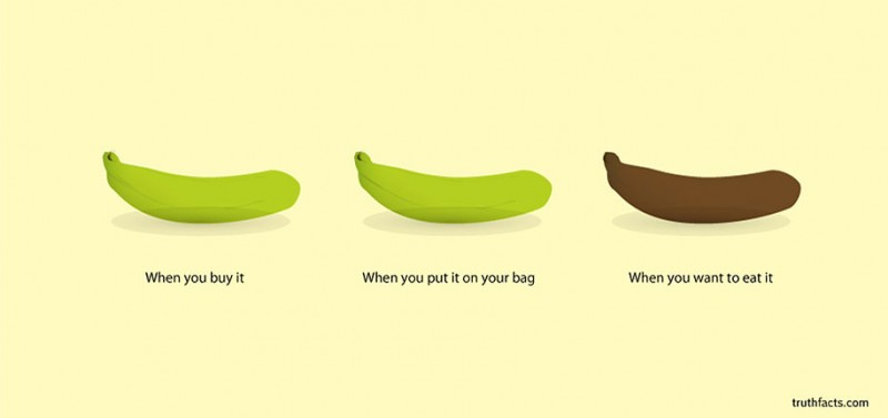humorous-funny-cartoons-graphs-truth-facts-daily-life (19)